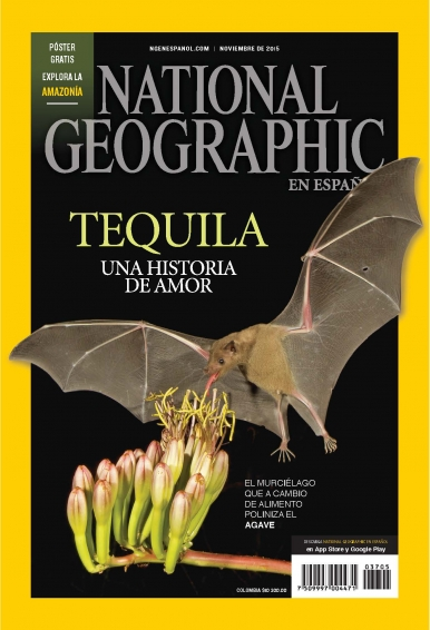 National Geographic - 30/11/15